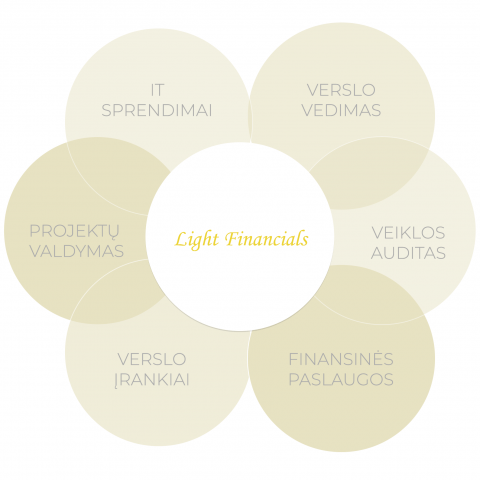 Light Financials