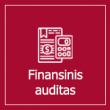 2020-01-17_Finansinis-auditas
